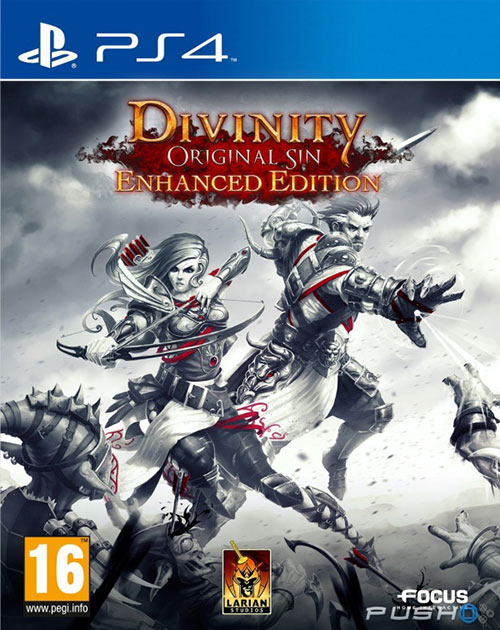 Divinity Original Sin Enhanced Edition - PlayStation 4 Játékok